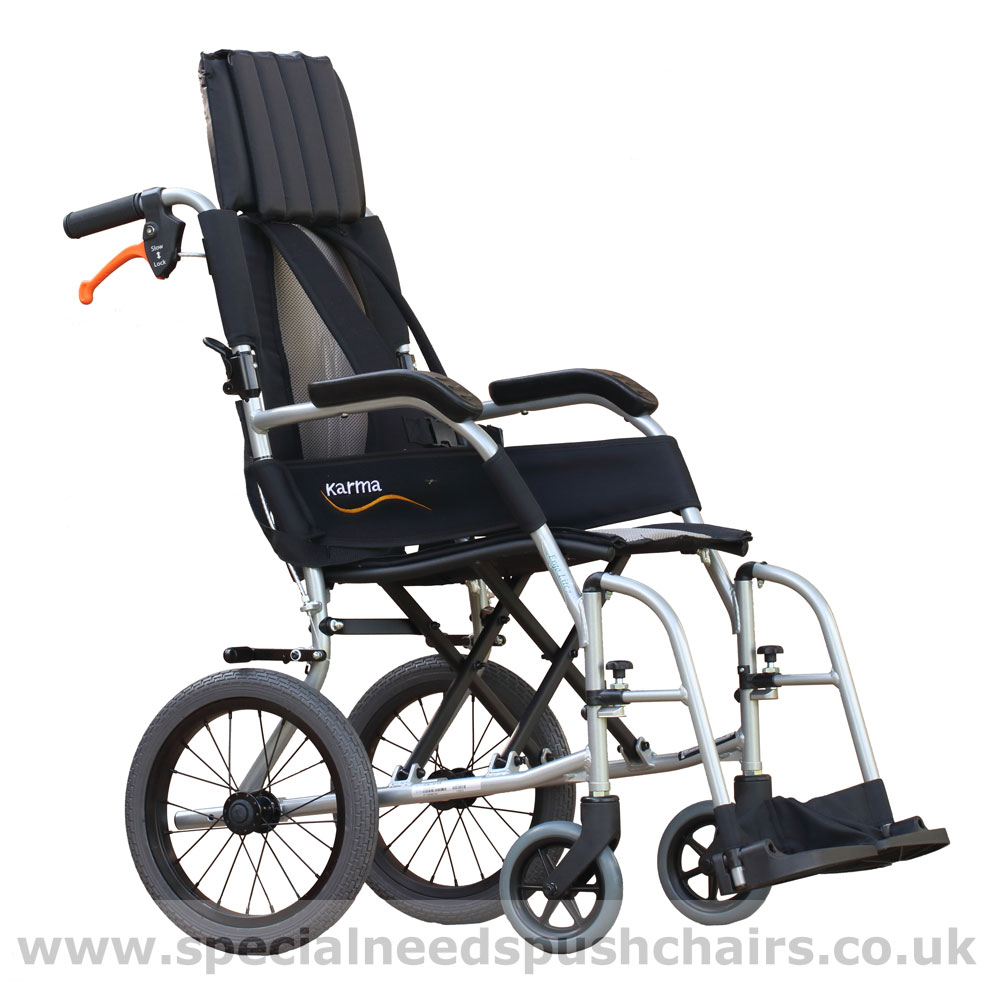 Ergo Lightweight Pushchair  sc 1 st  Special Needs Pushchairs : push chairs - Cheerinfomania.Com